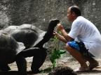 Ošetřovatel s želvou obrovskou