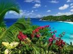 Seychelské pobřeží